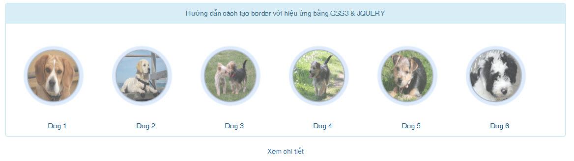 Hướng dẫn cách tạo border với hiệu ứng bằng CSS3 & JQUERY
